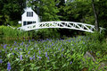 Flowering around foot bridge in acadia one of the most favorite bridges national park maine this is located the village of Stock Image