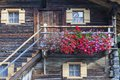 Flowering balcony on an old alphus Stock Image