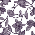 Flowering magnolia. Hand drawn monochrome seamless pattern with blooming flowers. vector wallpaper. Royalty Free Stock Photo