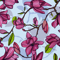 Flowering magnolia, pink color. Hand drawn colorful seamless pattern with blooming flowers. vector wallpaper.
