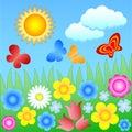 Flowering meadow Stock Photos