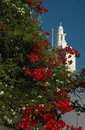 Flowering tree and greek church Royalty Free Stock Photo