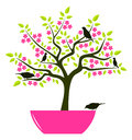 Flowering tree in pot and birds isolated on white background Royalty Free Stock Photo