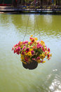 Flowerpot above the pool Royalty Free Stock Photo