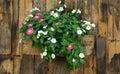 Flowerpot Wall On Old Slat Woo...