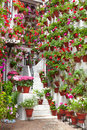 Flowerpots and flowers on a white wall old european town spain cordoba Stock Images