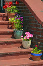 Flowerpots on old stairs colorful sitting Royalty Free Stock Photos
