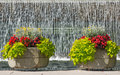 Flowerpots in the park and waterfall on background Stock Images