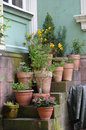 Flowerpots on a stairback idyllic backyard scenery garden pottery an old stairway Royalty Free Stock Image