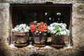 Flowerpots Royalty Free Stock Photo