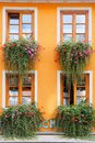 Flowers adorned house Stock Photo