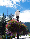 Flowers adorning the streets of leavenworth washington usa Royalty Free Stock Photos