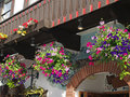 Flowers adorning the streets of leavenworth washington usa Royalty Free Stock Photography