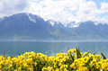 Flowers against mountains and lake Geneva from the Embankment in Montreux Stock Photography