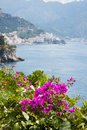 Flowers in the amalfi coast italy panoramic view of Stock Images
