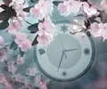 Flowers are apple trees and watch. Spring time. Nature blooms. Royalty Free Stock Photo