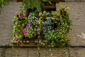 Flowers balconie, streets of the city Toledo, medieval architect Royalty Free Stock Photo