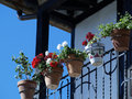 Flowers in the balcony Royalty Free Stock Photography
