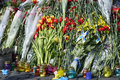 Flowers on the barricades of kiev in place death during a riot in february during political crisis in ukraine Stock Images