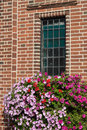 Flowers below window Royalty Free Stock Photo