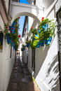 Flowers in blue flowerpot on the walls on streets of Cordoba. Sp Royalty Free Stock Photo
