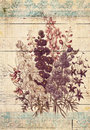 Flowers botanical vintage style wall art with textured background bouquet of shabby Royalty Free Stock Photography