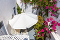 Flowers bougainvillea in fira town santorini crete greece island Royalty Free Stock Photography