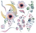 Flowers bouquet and moon phases watercolor  illustration Royalty Free Stock Photo