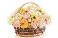 Flowers bouquet peony in basket, isolated white backgound Royalty Free Stock Photo