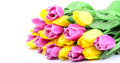 Flowers bouquet of tulips on a white background Royalty Free Stock Image