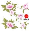 Flowers on branch. Stock line vector illustration botanic flower