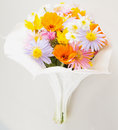 Flowers bunch a over a white background Royalty Free Stock Images