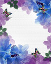 Flowers Butterflies background border Stock Photos