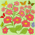 Flowers and butterflies color background colorful on light green with hand drawing illustration Stock Photography
