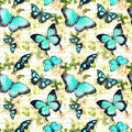 Flowers, butterflies, hand written text note. Watercolor. Seamless pattern Royalty Free Stock Photo