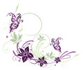 Flowers butterflies purple and filigree floral element Stock Photos