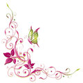 Flowers butterfly colorful tendril with pink and green Royalty Free Stock Images