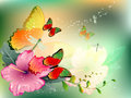 Flowers with butterfly and dragonflies Royalty Free Stock Photo