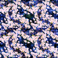 Flowers of cherry tree. Seamless pattern. Abstract wallpaper with floral motifs. Wallpaper.