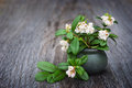 Flowers in a clay vase cowberry on wooden table Royalty Free Stock Photos
