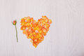 Flowers composition heart symbol made of dried flowers. Heart of rose petals