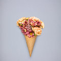 Flowers in cone. Royalty Free Stock Photo