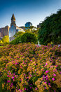 Flowers and the Custom House Tower in Boston, Massachusetts. Royalty Free Stock Photo