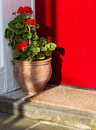 Flower Pot and Welcome Mat on Doorstep Royalty Free Stock Photo