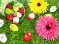 Flowers and Easter eggs Royalty Free Stock Photos