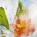 Flowers frozen in ice colorful into Royalty Free Stock Photos