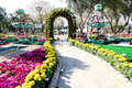 Flowers gallery in baghdad image of of for which is held annually zora park central Stock Photos