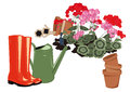 Flowers in the garden rubber boots and watering geraniums blooming Stock Photos
