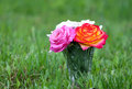 Flowers give inspiration pink red and white roses in the vase on the green grass Stock Photos