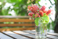 Flowers in glass bottles Royalty Free Stock Photo